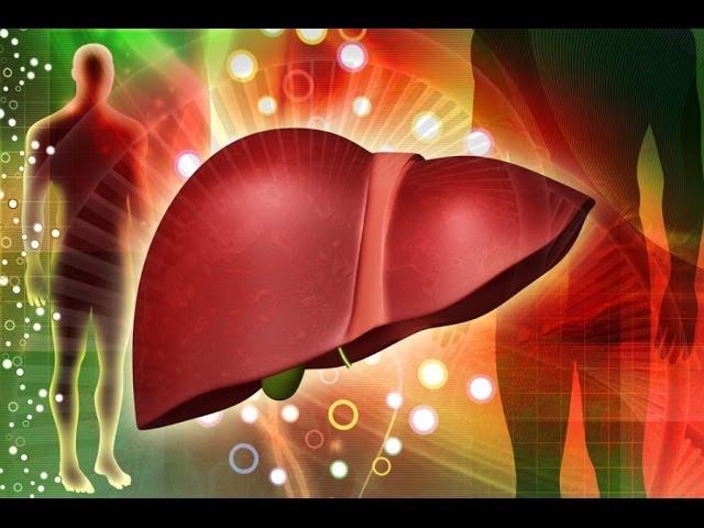 как почистить кровь от холестерина