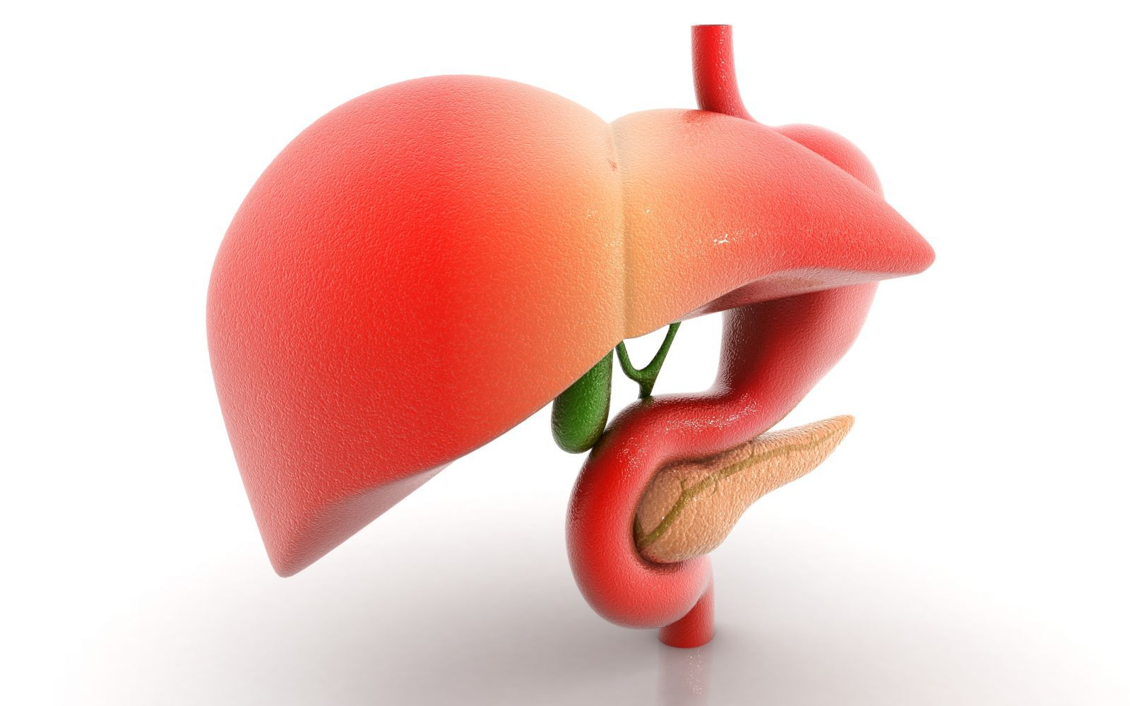 признаки повышенного холестерина у мужчин