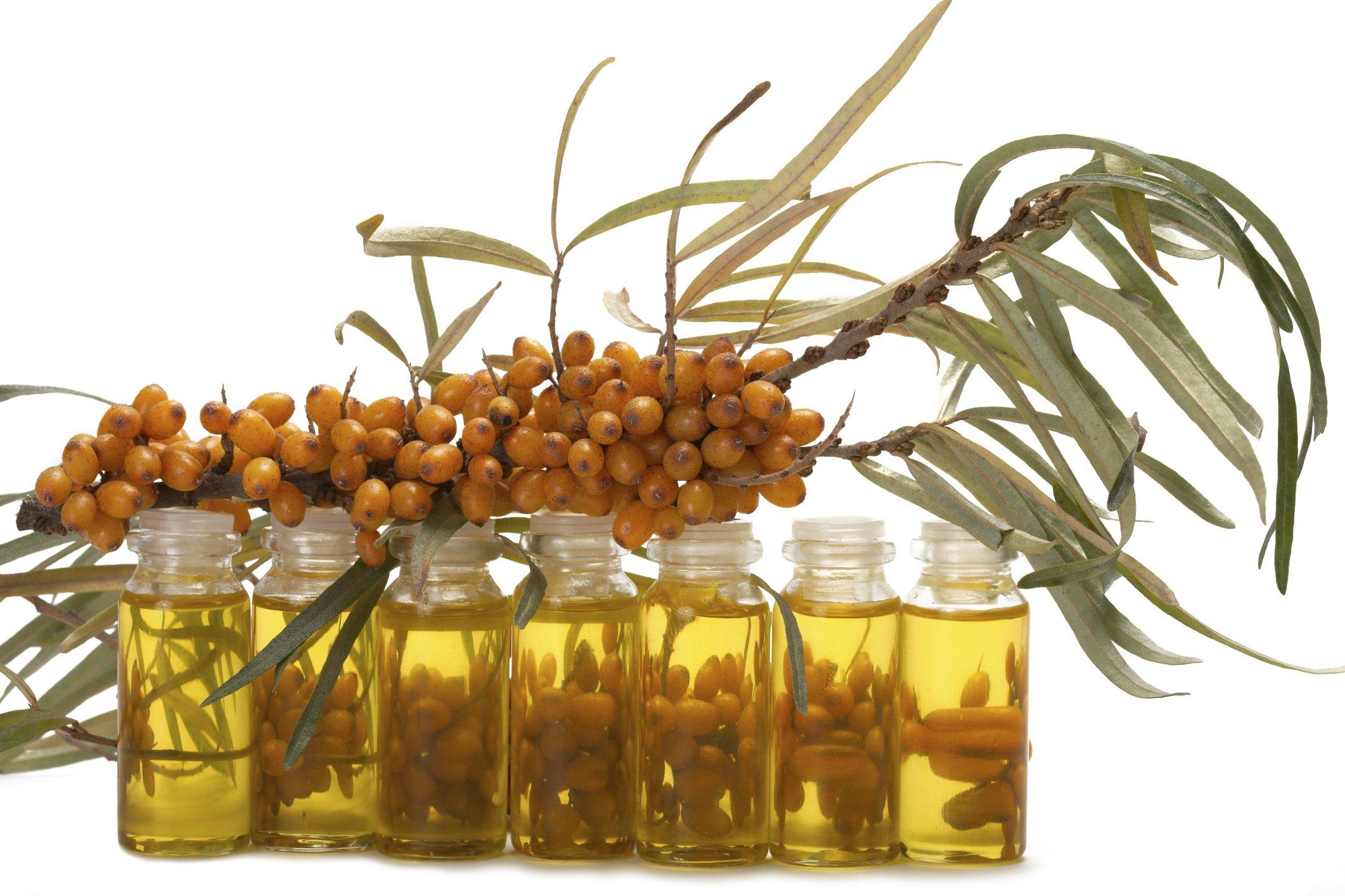 Как сделать домашнее масло из облепихи в домашних условиях