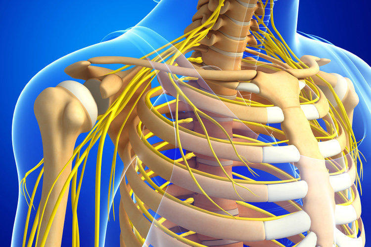 Боль в грудной клетке - причины появления и методы лечения